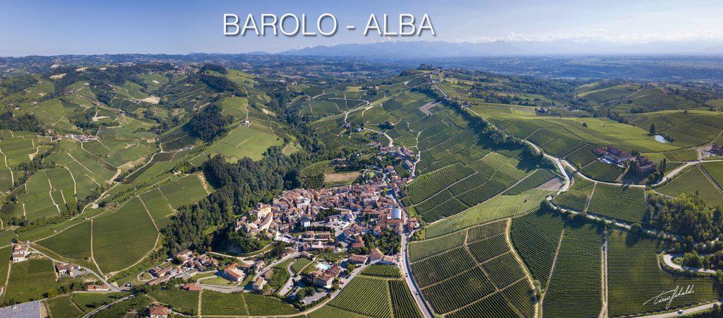 Il Piemonte delle eccellenze vitivinicole